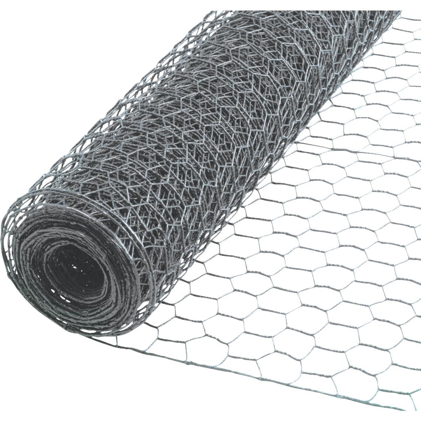 Do it 2 In. x 48 In. H. x 150 Ft. L. Hexagonal Wire Poultry Netting Image 1